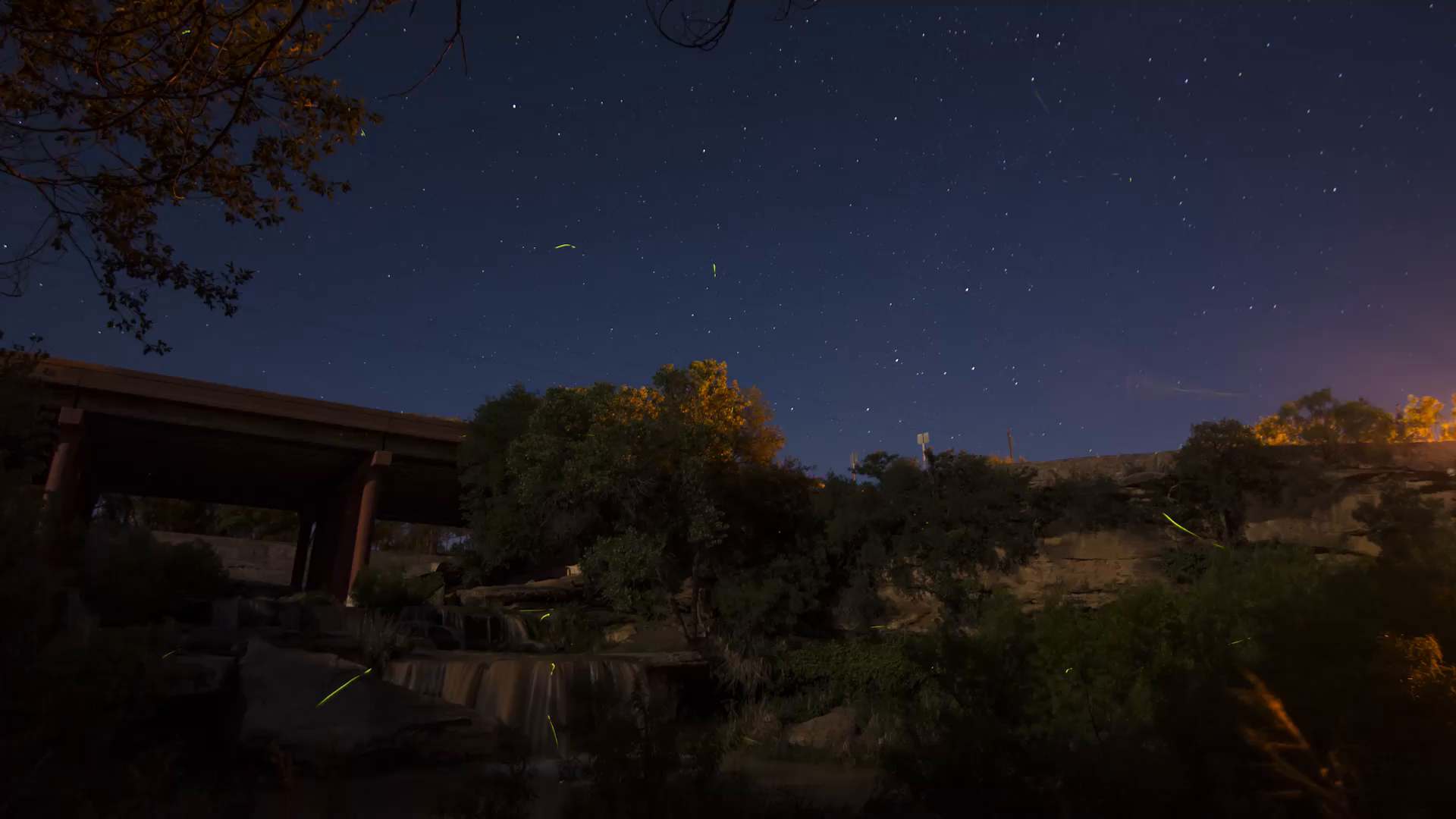 Startrails fireflies.mp4 poster